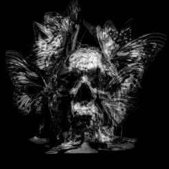 Philippe Pasqua, Skull (White), 2015, C-Print, Framed 160 x 119 cm